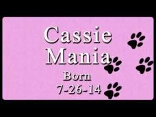 Cassie Mania - Slideshow